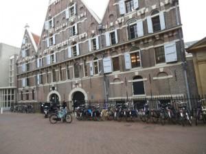 אופניים בכל מקום