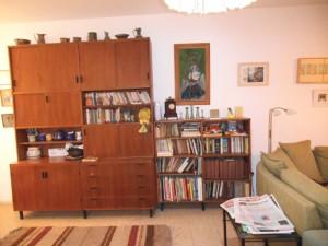 ארון בחדר המגורים סדרות ידע  אוסף ספרי קריקטורות כל מיני ספרים לעיון