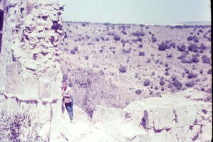 הארי כהן - המונטפורט 1961