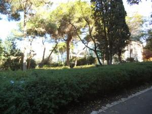 קטע בגן עם שבילים וספסלים ברוכים הבאים בצילו