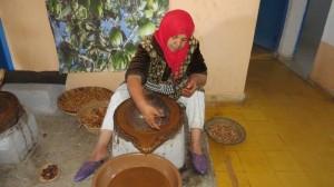 טוחנת פרי עץ האראגן לשמן במרוקו (1)
